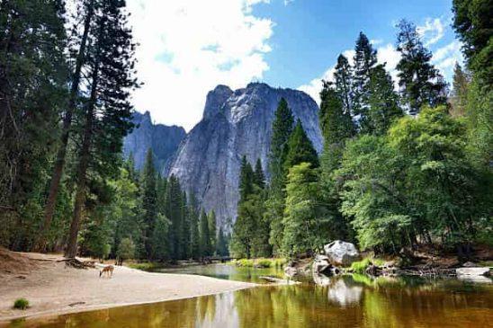 National Parks in California Yosemite