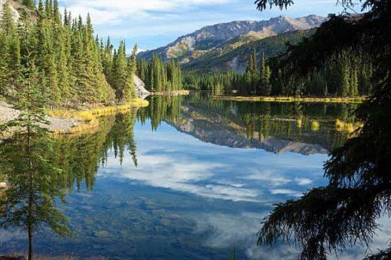 Beautiful Landscapes Denali National Park